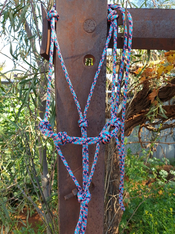 4 Knot Halter Aqua/Navy/Pink