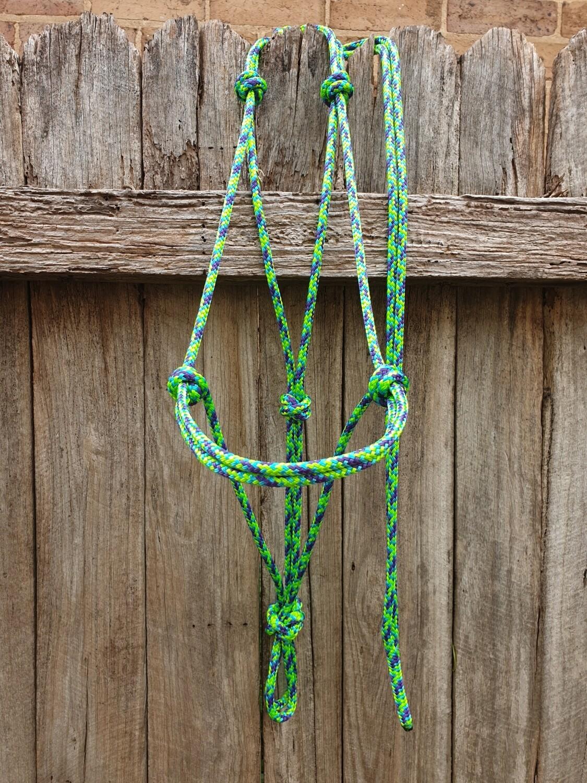 Aqua/Lime/Purple Rope Halter