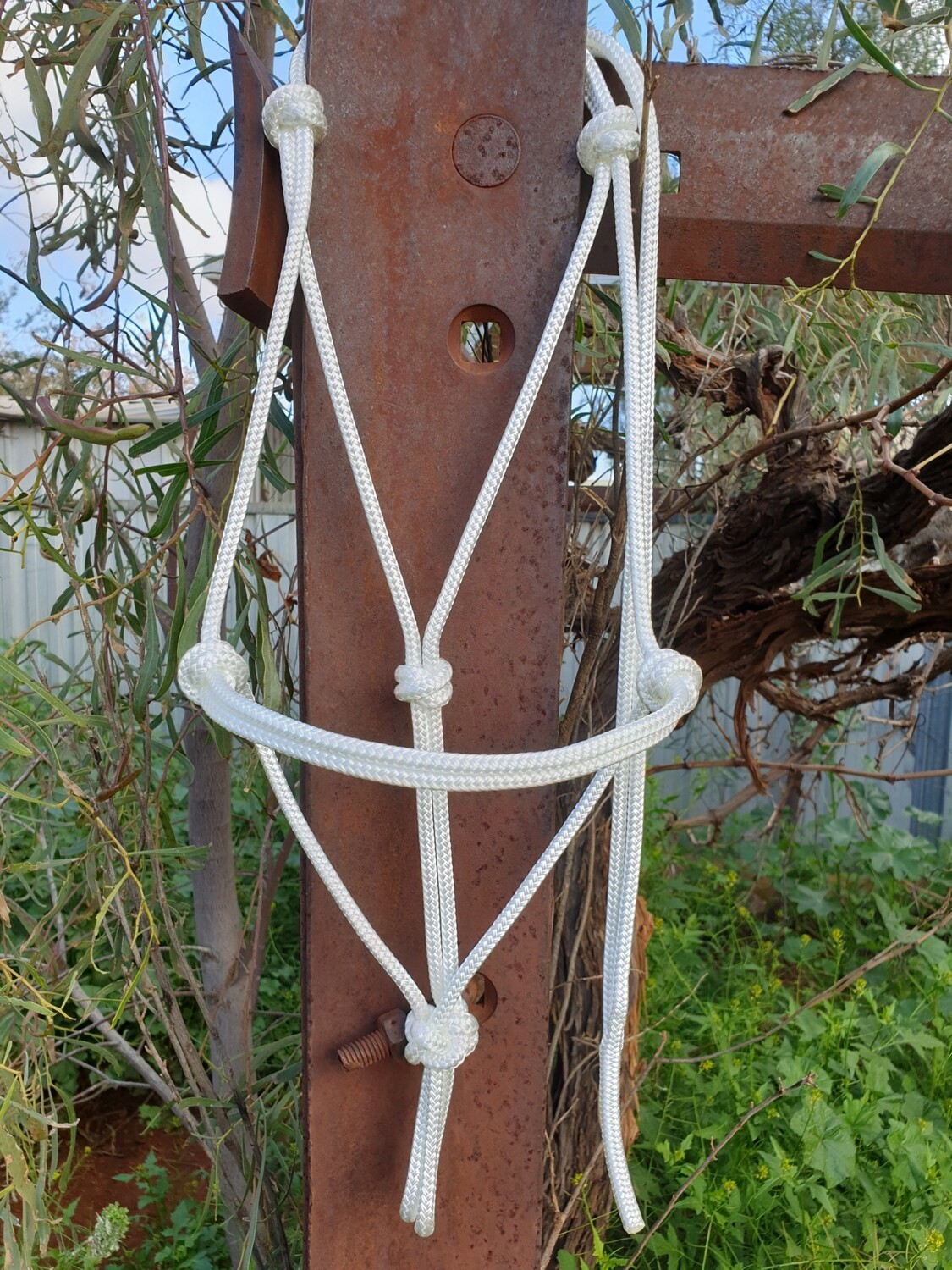 White Rope Halter