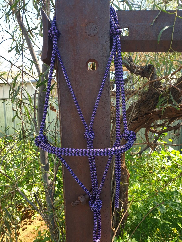Purple/Black Zig Zag Rope Halter