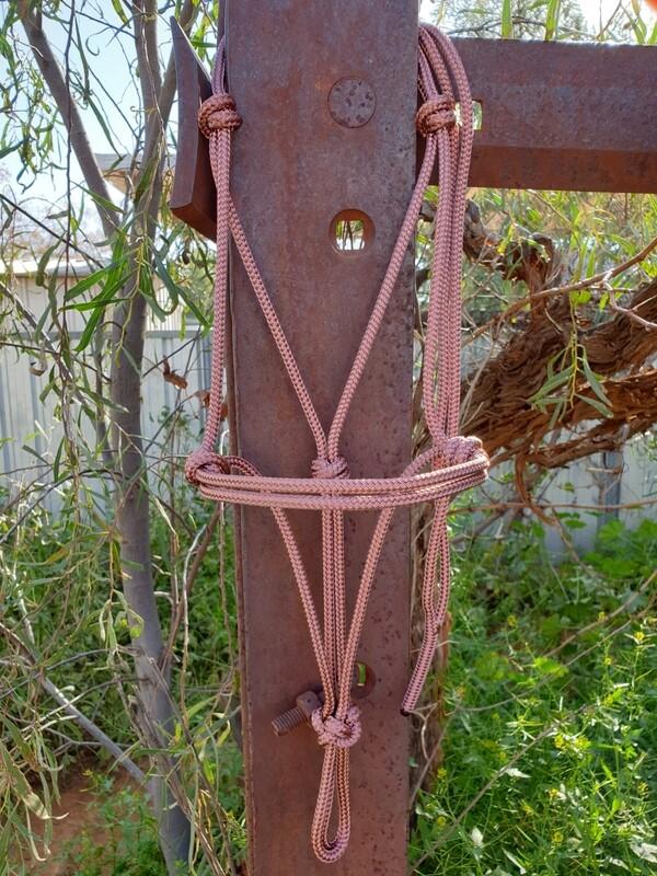 Brown Rope Halter