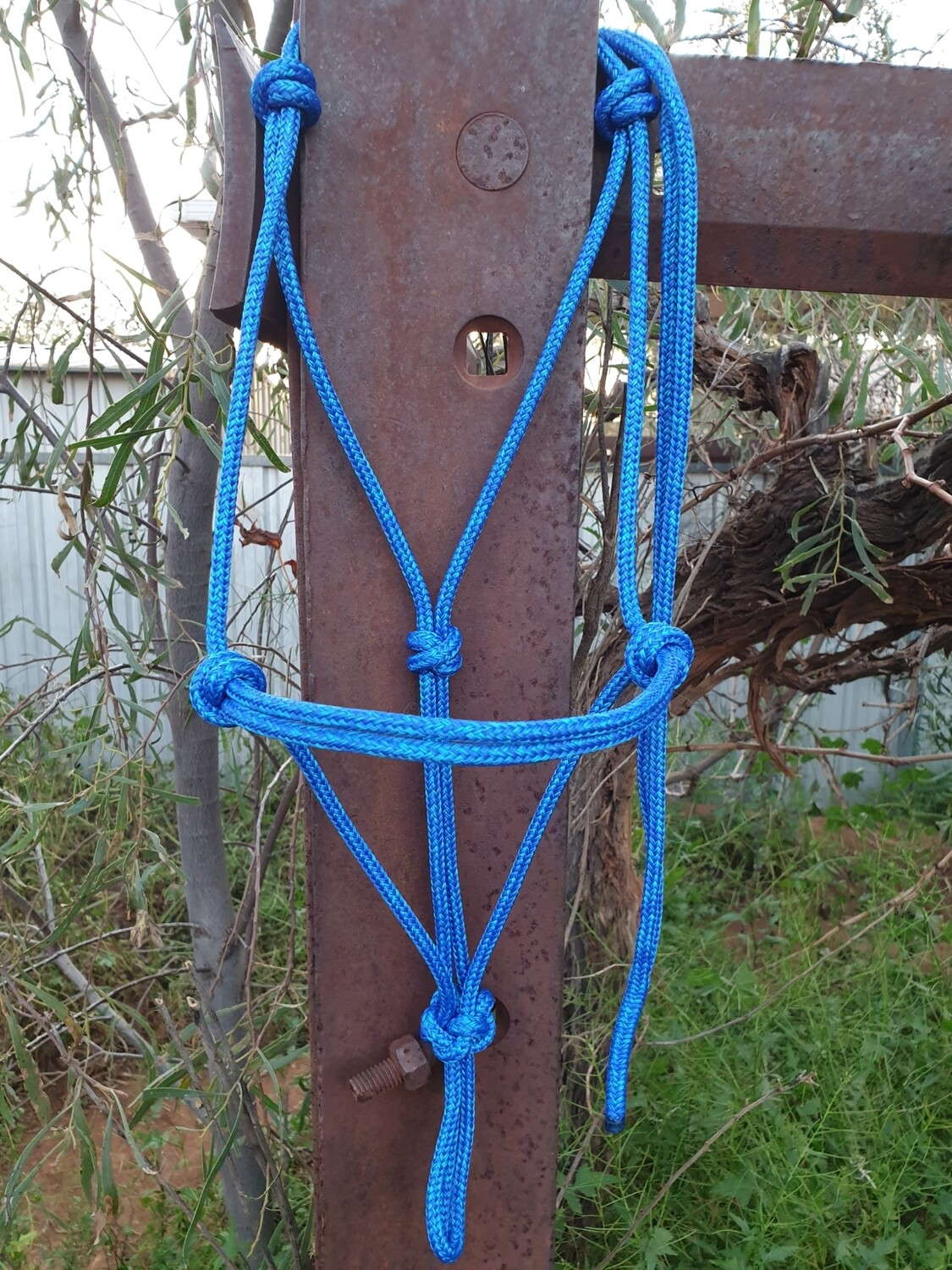 Mottled Royal Blue and Aqua Rope Halter
