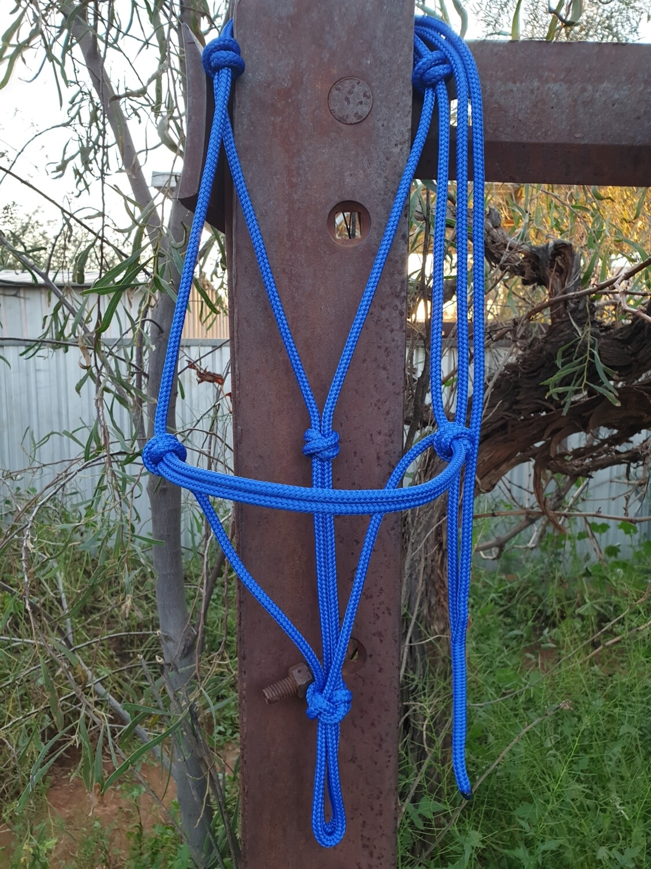 Royal Blue Rope Halter