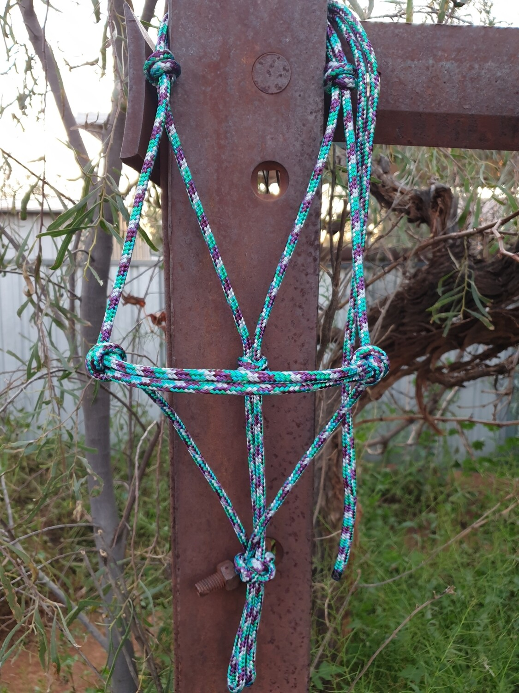 Mint/Plum/Silver Rope Halter