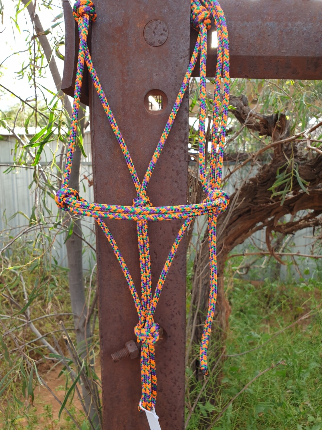 Kelly Green/Orange/Purple Rope Halter