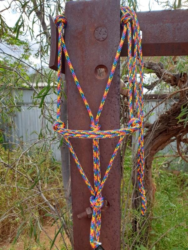 Bright Rainbow Rope Halter