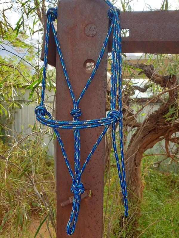 Royal Blue/Aqua/Silver/Black Rope Halter
