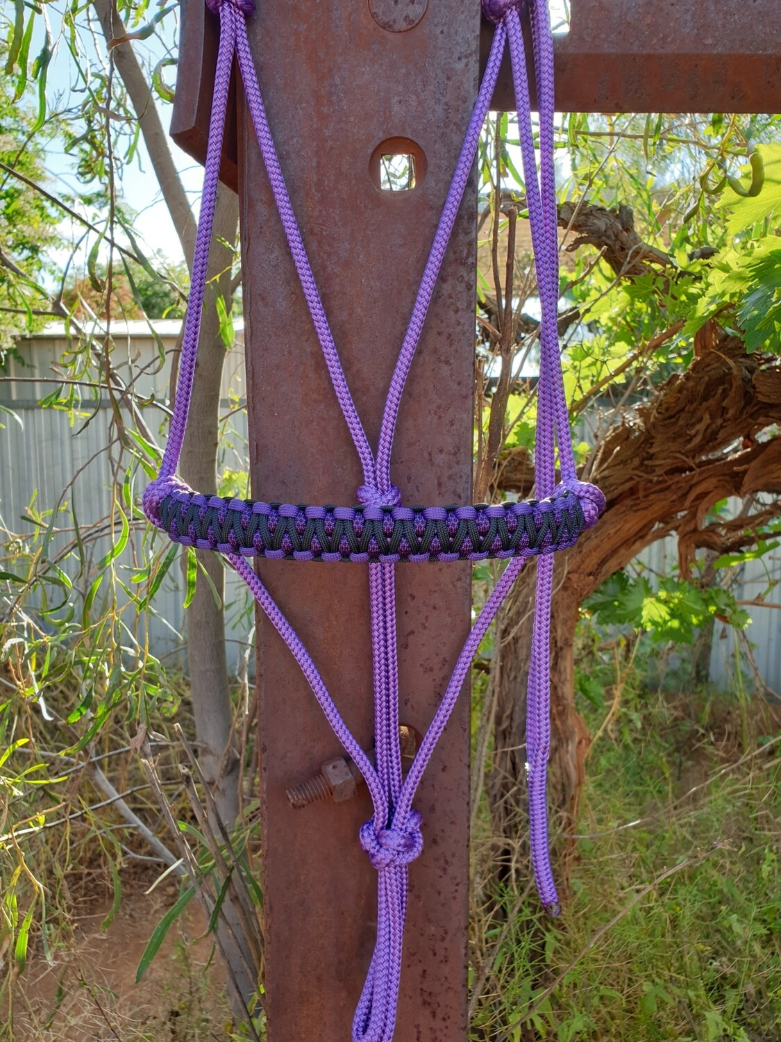 Drakon Purple/Purple & Black Diamonds/Black Rope Halter