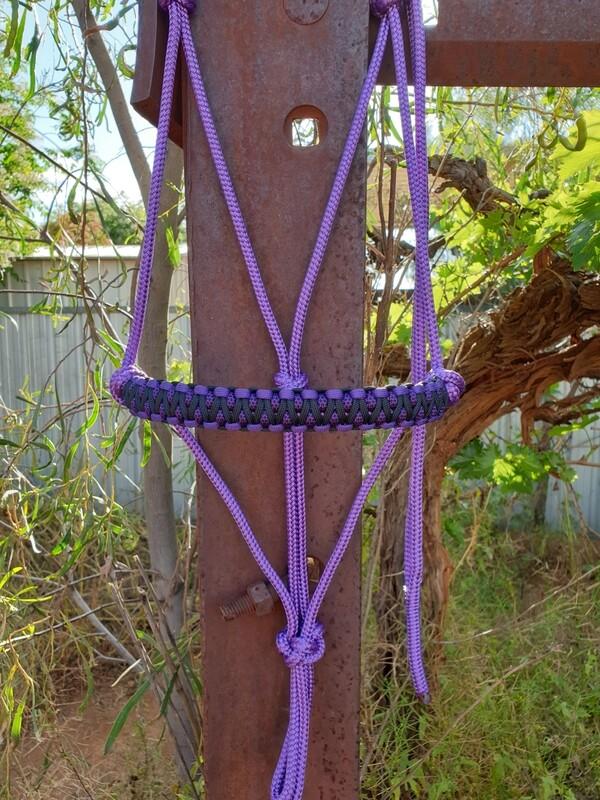 Drakon Purple/Purple & Black Diamonds/Black Rope Halter