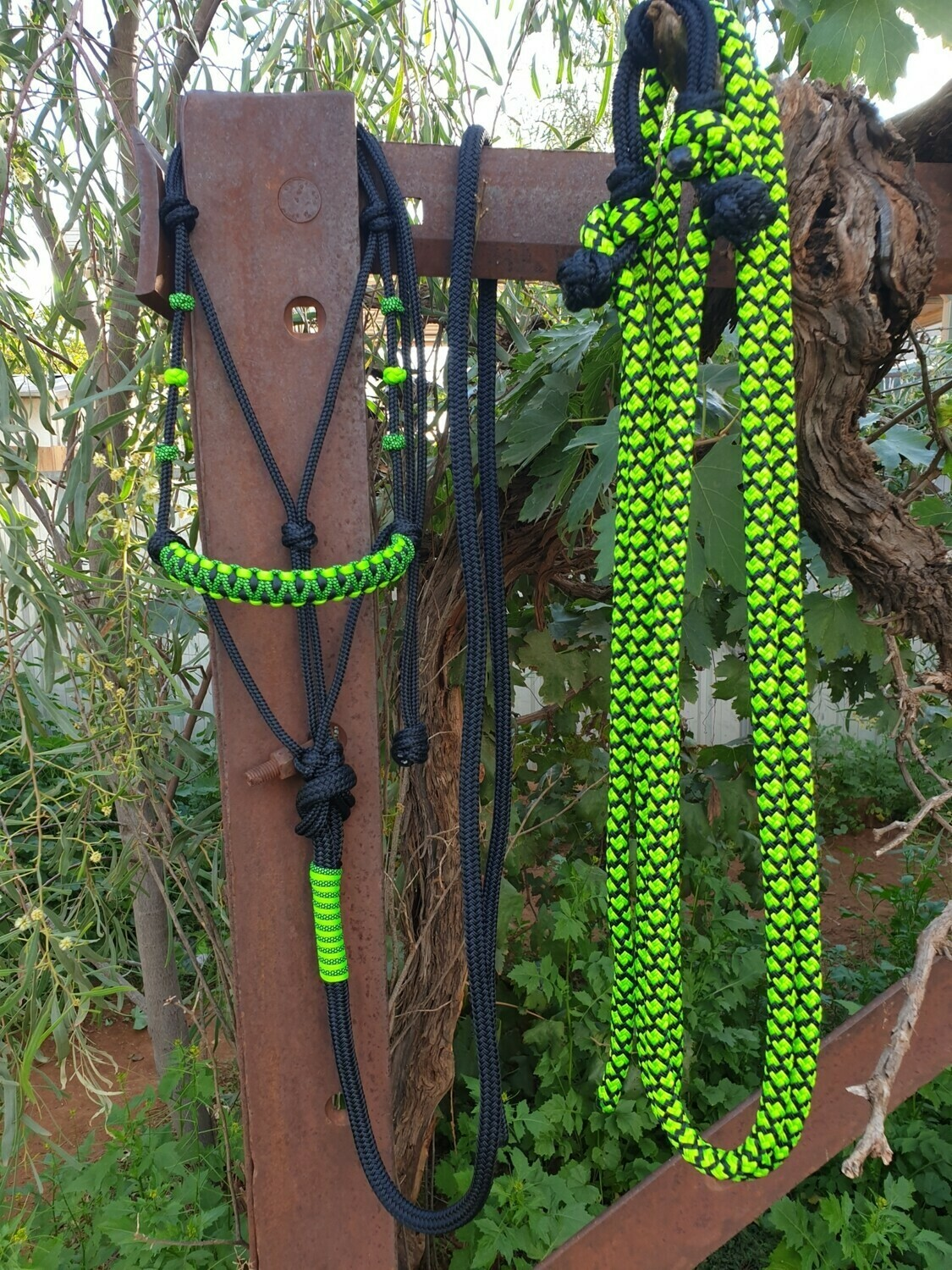 Drakon Midnight Black/Lime Green/Lime Green-Black Diamond Rope Halter, Lead and Rope Reins Set