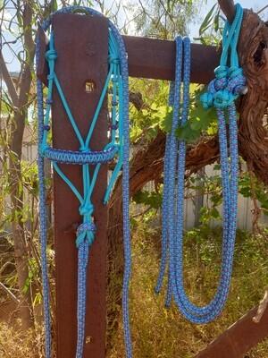 Drakon Aqua/Acid Purple /Aqua-Acid Purple Diamond Rope Halter, Lead and Rope Reins Set