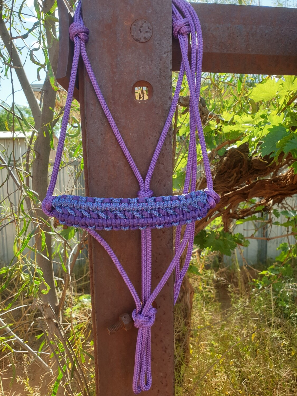 Apollo Purple/Aqua-Purple Diamonds Rope Halter