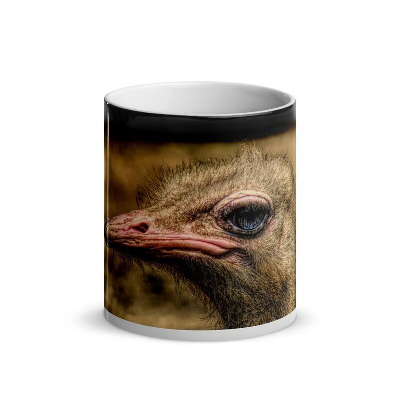 Ostrich Headshot_147 Glossy Magic Mug