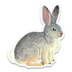 Cactus Club Rabbit Sticker