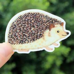 Cactus Club Hedgehog Sticker