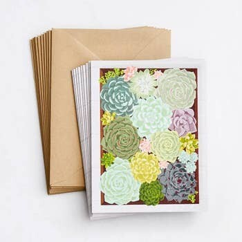 Paper Source Succulent Note Cards, Box of 10