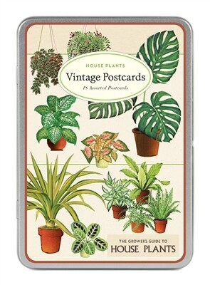 Cavallini Vintage Postcards House Plants