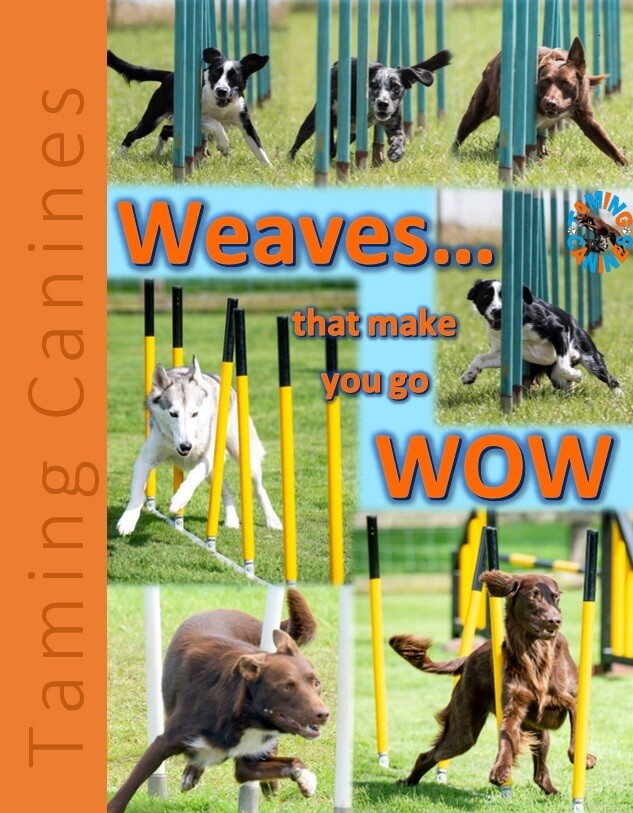 Weaves that make you go WOW EBook