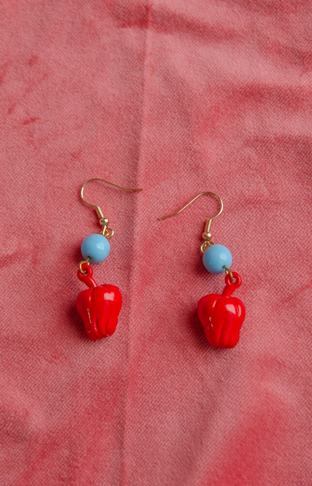 Fruit RV remade earring