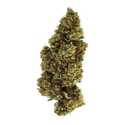 Organic Premium Lifter CBD Flowers