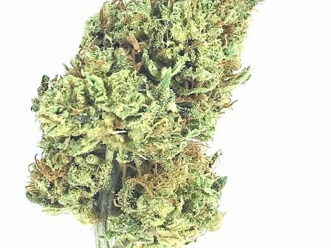 Blueberry Cannabis Flowers - BULK WHOLESALE