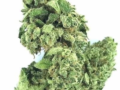 NLX Cannabis Flowers BULK WHOLESALE