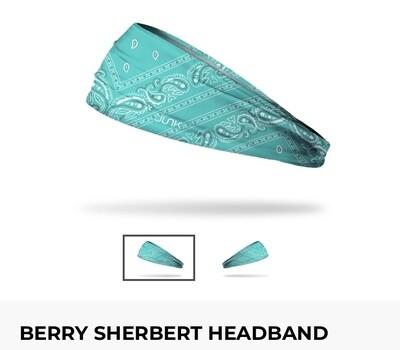 Junk Headband