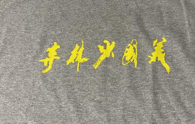 Unisex Original T-Shirt - Gray