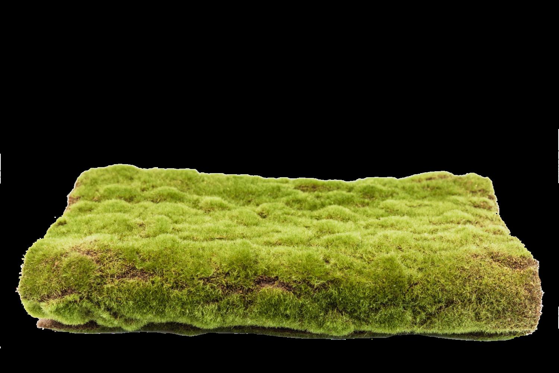 Faux Moss Mat