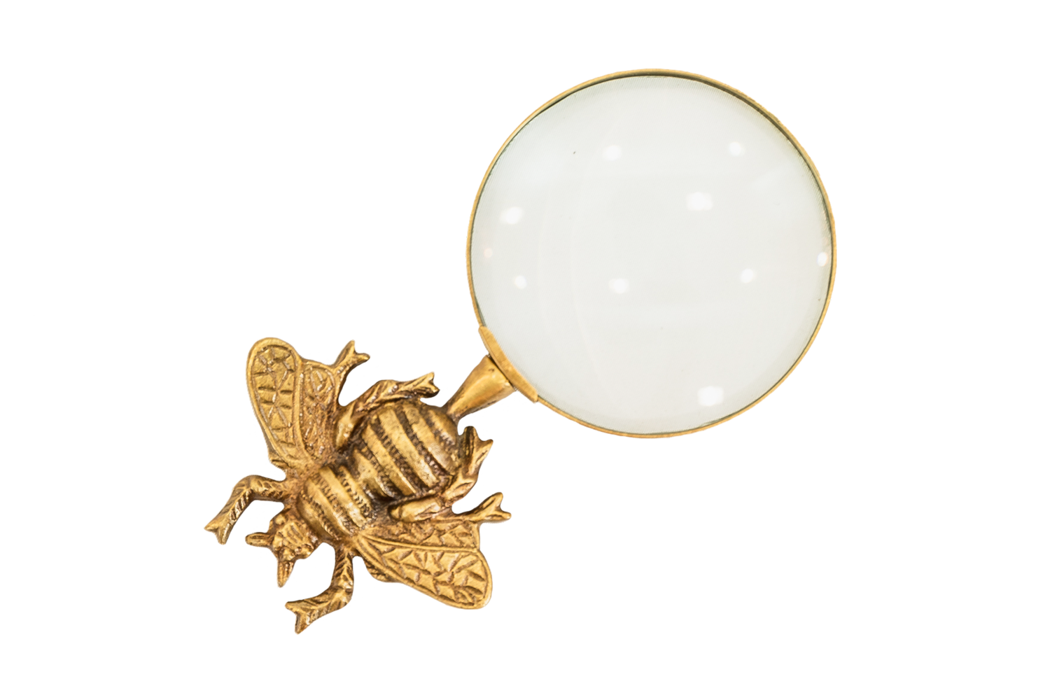 Bee Magnifying Glass