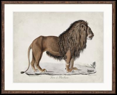 African Animal Artwork