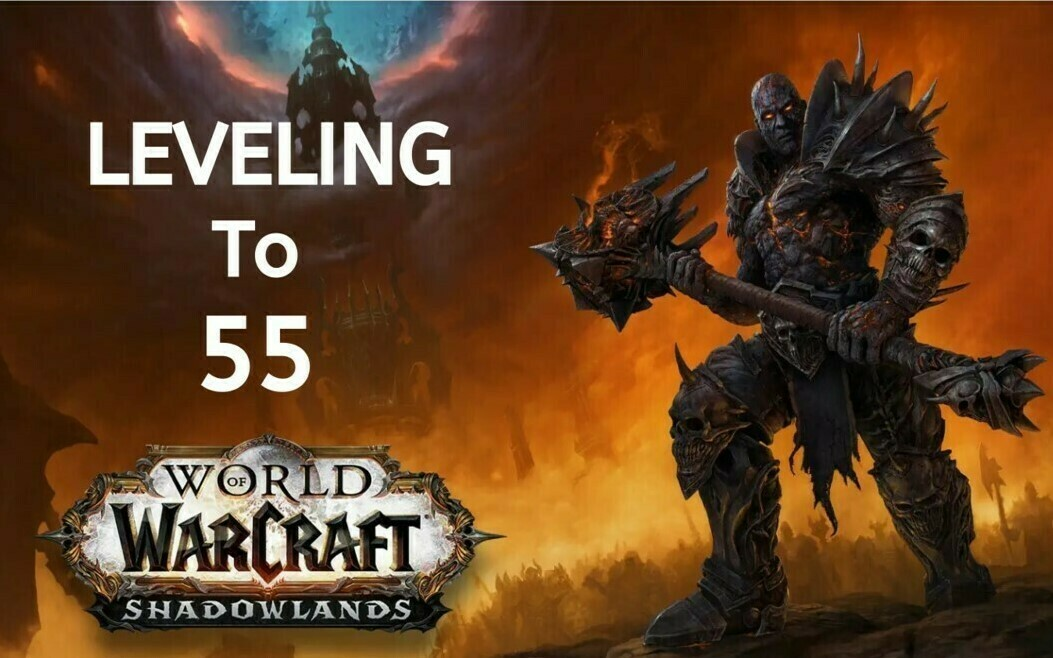 WOW Shadowlands Leveling to 55