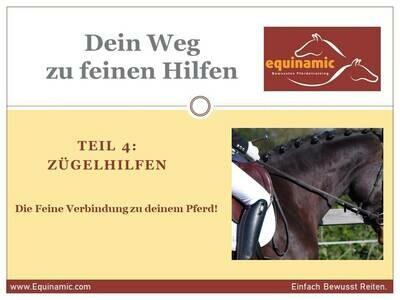 Webinar Reihe- Teil 4: Zügelhilfen, die Feine Verbindung zu deinem Pferd!