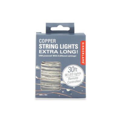 Ex Lg Silver String Lights /LT20