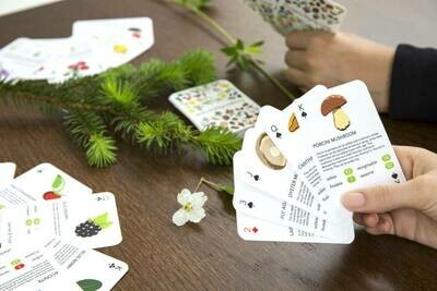 Foragers Cards /GG132