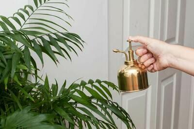 Brass Plant Mister /CD508