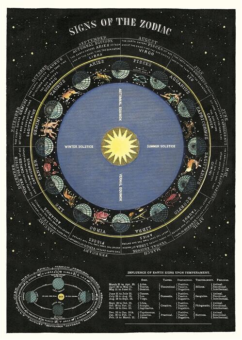 Zodiac Chart /#51