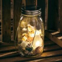 Lighted Seashell Lantern /36370
