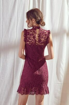 Fitted Lace High Neck Dress