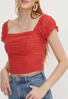 Red Eyelet Crop Top