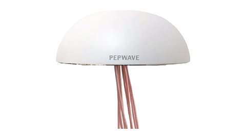 IP67 Dome Omnidirectional Dual MIMO LTE Antenna