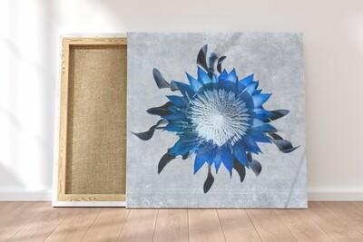 Madiba Protea 3 on canvas