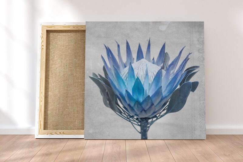 Madiba Protea 4 on canvas