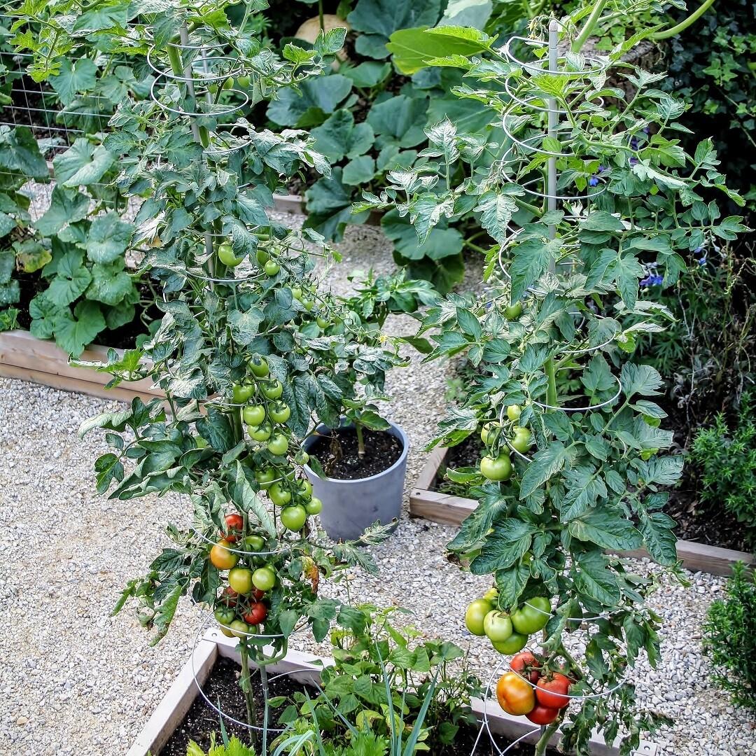 2 uitrekbare plantensteunen | Ø 30 cm