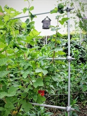 Uitbreidbare trellis leisteun voor kleinfruit   L 107 x H 157 cm