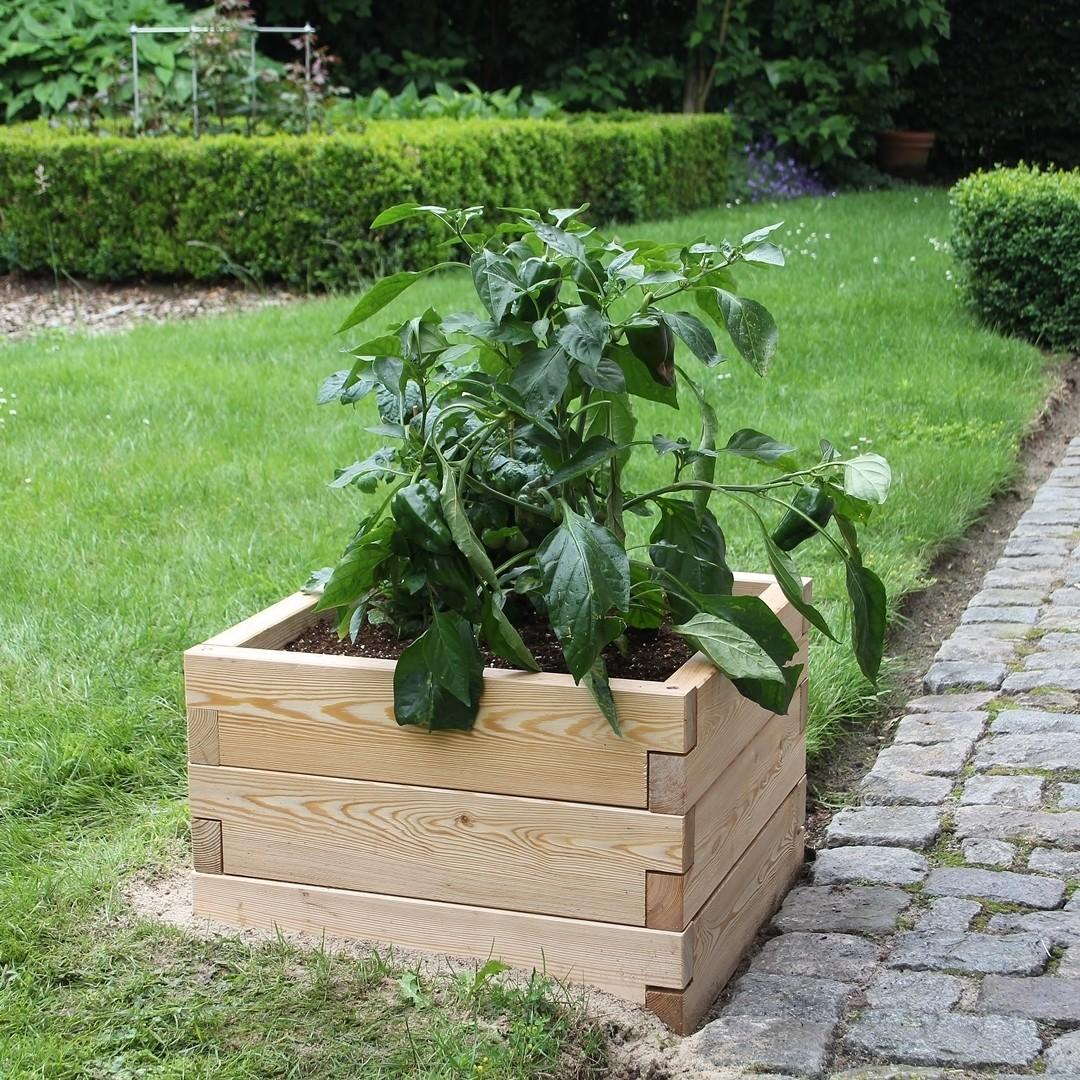 Modulair uitbreidbare houten plantenbak | L 57 x B 57 x H 25 cm