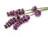 D'Olivo Lavender Balsamic Vinegar