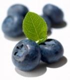 D'Olivo Blueberry Balsamic Condimento