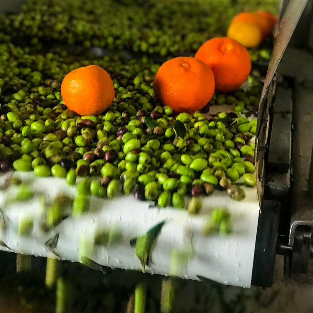 Mani Orange Agrumato (Fused) Greek Olive Oil