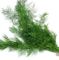 D'Olivo Fernleaf Dill Olive Oil